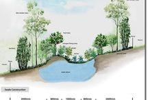 Water Harvesting / Water Harvesting