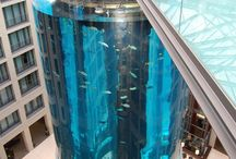 Amazing aquariums