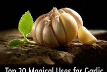 Garlic for Health and Wellness