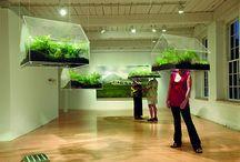 Plants Tech