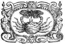 Marche tipografiche / Le immagini della marche tipografiche tratte dal libro Le Seicentine della Biblioteca del Museo Correale di Terranova | Sorrento