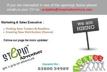 JOBS at Stepinadventure / Urgent Openings at Stepinadventure