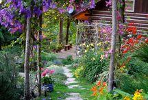 garden.  path