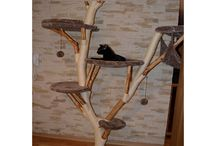 Kočičí stromy
