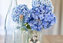 Heather Wilson wedding ideas / by Terry Oakley