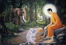Állatok a buddhizmusban