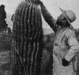 Documentos para la Historia de la Ciencia y la Tecnología en América Latina / Fuentes primarias