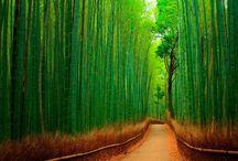 Paisajes, destinos inspiradores / Destinos inspiradores, llenos de color, un sentir mágico que te llevan a otro mundo!!!