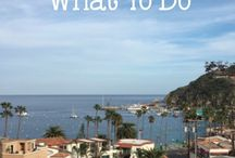 Catalina Travels