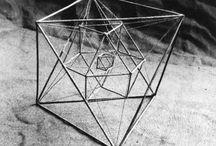 biometric geometric
