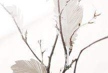 Feathers ByMAR