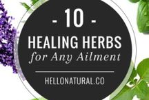 Healing herbs and repellents