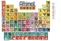 The Animal Table / The Animal Table features almost 100 animals. The animals are organized in a similar layout and structure to the Periodic Table of the Elements. The animals are then organized by animal kingdom classification. / by ScoutDog Studios