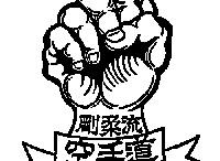 www.goju-kai.com.ar