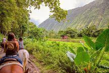 Hawaii / Travels in Hawaii