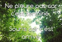 quelques phrases !