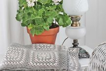 summer ideas for the house  / by Sevina Yates