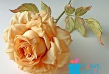 ☆ Flowers ✿ڿڰۣ(̆̃̃•