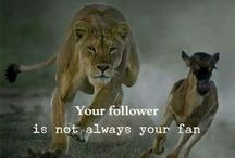 Your follower is not always your fan