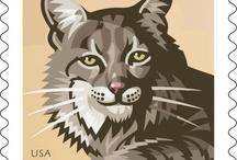 Animal Kingdom / by U.S. Postal Service