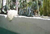 Esterno-patio-giardino