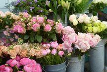 Flowers around London