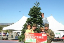 Trees for Troops Delivers / Trees for Troops, with partner FedEx, delivers real Christmas trees to military families at 60+ bases across the U.S. and overseas.  This board features photos from military families receiving their free Christmas trees!