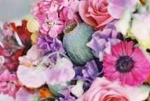 Floral / by Tiffany Halim