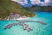 french polynesia honeymoon / Amazing destinations for your honeymoon in French Polynesia / by Ever After Honeymoons