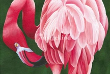 Pink Flamingos / My favourite animal which I have a secret hidden talent to draw and paint, and also an obsession with anything pink flamingo!