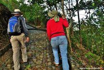 Camino a la montaña / Recorrido por la reserva natural Las Nubes, entre Pueblorrico, Tarzo y Jerico en el suroeste de Antioquia Colombia.