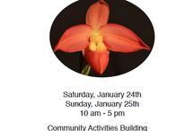 Peninsula Orchid Society Show 2015 / POS 2015 Show & Sale Redwood City, CA Jan. 24 - 25
