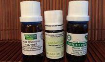 santé huiles essentielles