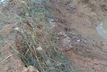 Mahenge Spinel Deposits