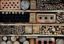 Insecten hotel / Insect hotels