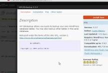 WordPress Tips / Tips For Using WordPress.org