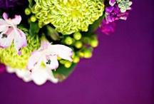 Wedding Ideas / by Becky Smith