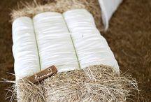Country/Rustic Weddings