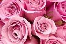 цветы для души