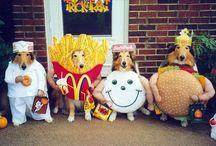 Doggie Humor / www.poochandcompany.co.uk