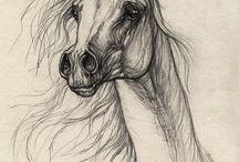 ART2 HORSES