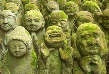お地蔵さん、仏像さん、菩薩さん、神さん