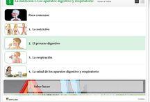 6º Naturales Unidades Didácticas / Material complementario para el desarrollo de las Unidades Didácticas de Ciencias de la Naturaleza de 6º Nivel de Educación Primaria. Juegos, actividades interactivas y materiales didácticos.