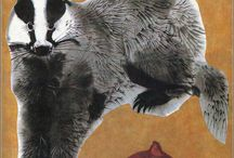 Mustelids - Skunks, Badgers etc. / by Laura Ottina