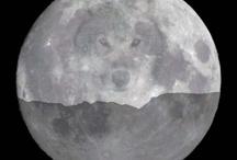 Fan of Werewolves