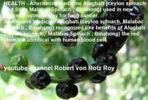 HEALTH - Benefits of Alugbati (ceylon spinach, Malabar Spinach , Binahong)