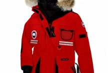 Canada Goose kensington parka sale official - Wholesale Cheap Canada Goose Youth Chilliwack Bomber Bonfire ...