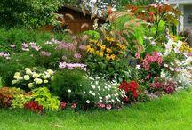 astuce jardin