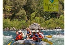 Rafting and Kayaking in Calif. / Mild to wild boating on the South Fork American and Middle Fork American Rivers, California. We have water!