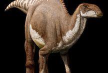Brachylophosaurus and Parasitic worms / Parasitism